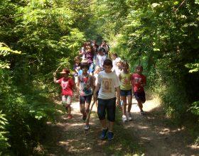 Un giornata nel Bosco Incantato: così le famiglie di Fontaneto trascorrono insieme la domenica